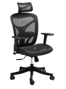 SIEGES Ergonomic High Mesh Office Adjustable Headrest, 3D Flip-up Arms, Back Lumbar Support Computer Desk Task Executive Chair