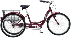 Top 10 Best Adult Tricycles 2019 Reviews