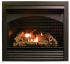 Top 10 Best Gas Fireplace Inserts 2021 Reviews